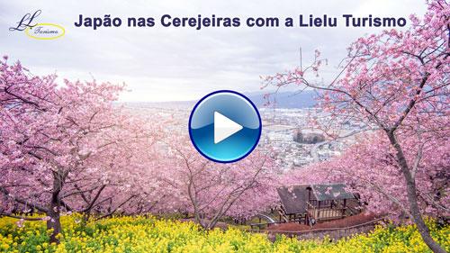 Vídeo do Japão nas Cerejeiras com a Lielu Turismo!